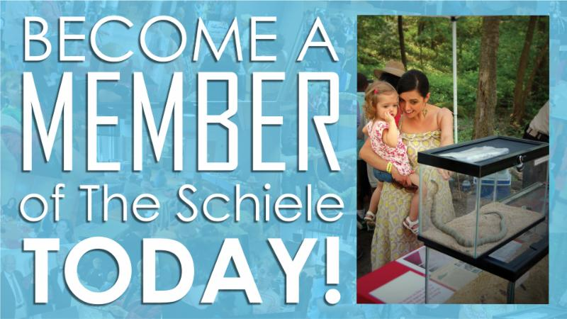 Become a Schiele Member
