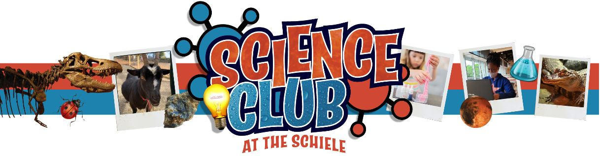 Science Club - Your Daily Remote Learning Solution